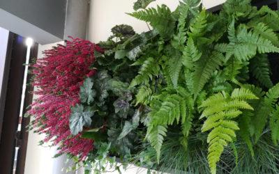 Le cadre végétal, un espace vert dans votre intérieur.