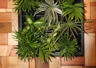 panneau-recup-bois-végétal